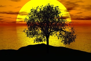tree-1076831_640